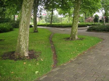 """desire path"""